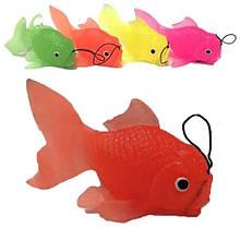 Игрушка резиновая Рыбка 10 шт