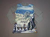Серый тёплый реглан свитшот на байке для девочки , 134, рост, фото 1
