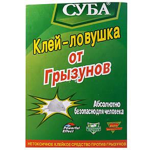 Клей ловушка от Грызунов СУБА, фото 2