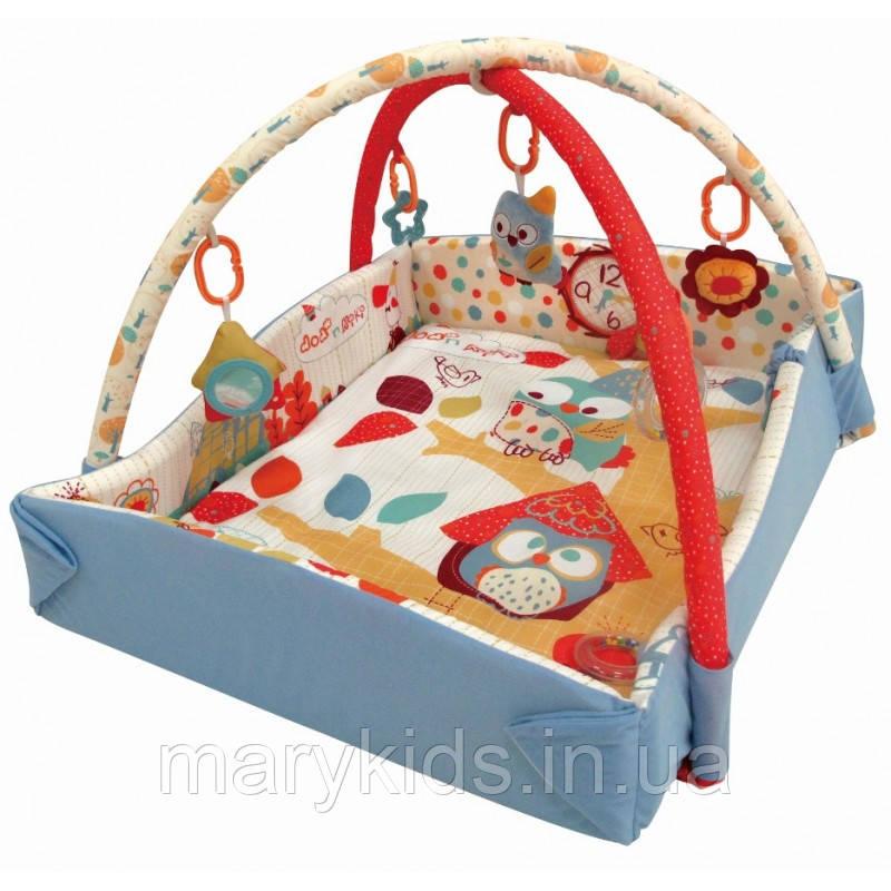 Игровой коврик Baby Mix TK/3261CE-4992 Сова