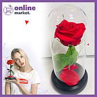 Роза в колбе с LED подсветкой (большая) / Цветок в колбе