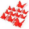 Эксклюзивные бабочки для декора красные.