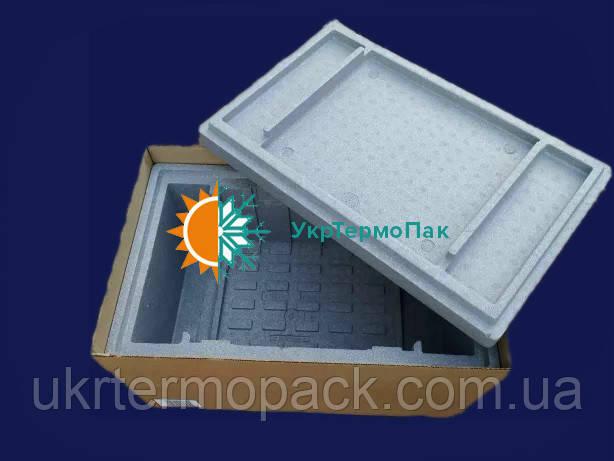 Термобокс, термоконтейнер, холодильник Roche. 30 литров КОМПЛЕКТ+