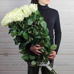 Букет с доставкой 3-101 свежие белые розы Кривой Рог