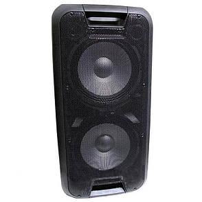 Портативна колонка Su-Kam 1010 в комплекті 2 мікрофона BT 12v\220v Акустична портативна колонка, фото 2