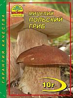 Мицелий Польский гриб 10гр