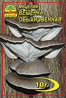 Мицелий Вешанка  обыкновенная  10гр