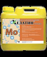 Удобрение Хелатин Молибден, 10 л, ТД Киссон