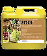 Удобрение Хелатин Forte, 10 л, ТД Киссон