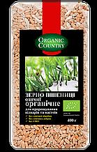 Зерно пшеницы озимой для проращивания, отваров и настоев органическое, Украина, 400 г, ORGANIC COUNTRY