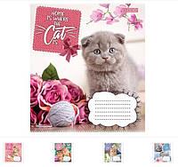 Тетрадь ученическая А5/12 косая линия 1 Вересня CATS, 25шт/упак., 764812