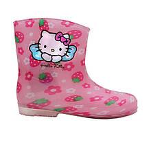 Резиновые сапоги MR.BABY Hello Kitty 33 Розовые 167 33, КОД: 686092