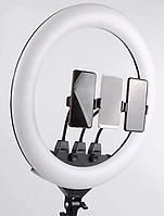 Кольцевая светодиодная LED лампа на штативе для блогера, селфи, фотографа, визажиста D55 см 220В