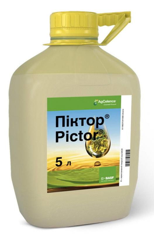 Фунгицид Пиктор