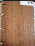 Межкомнатная дверь  Линнея ПВХ DeLuxe с матовым стеклом,цвет золотая ольха, фото 2