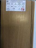 Двери гармошка Vinci Decor Бук  межкомнатные глухие, фото 2