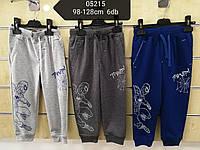Спортивні штани для хлопчиків Spider 98-128р.р