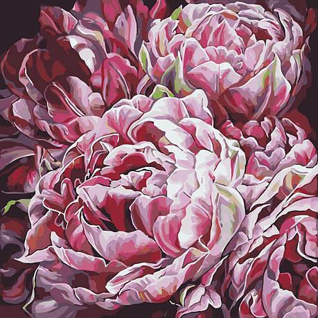 Картина по номерам Идейка Буйство красок 40*40 см (без коробки) арт.KHO3014, фото 2