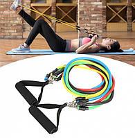 Набор трубчатых эспандеров для упражнений Trend-mix Разноцветный