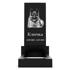 Пам'ятка для собаки Р-01