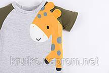 Футболка для хлопчика Маленький жираф Little Maven (2 роки), фото 3