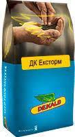 Семена озимого рапса ДК Эксторм (ДК Ексторм)
