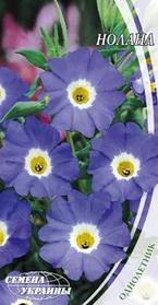 Семена цветов Нолана 0,3 г, Семена Украины