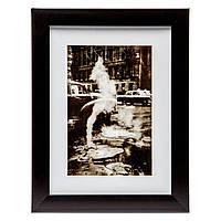 Картина в стиле ретро 18*23 B-77-43 (черный)