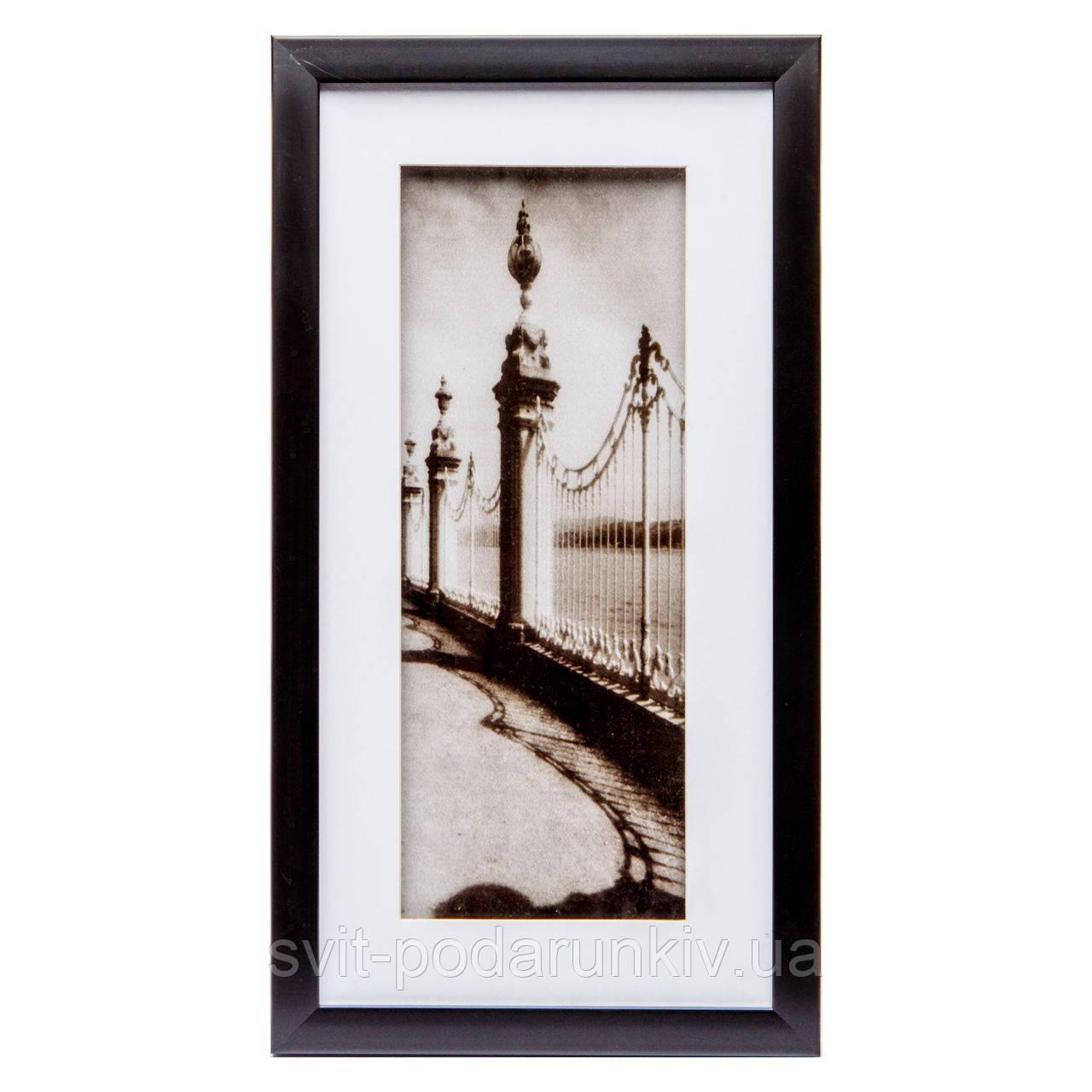Картина с фотографией в ретро стиле 23*43 B-80-18 (черный)