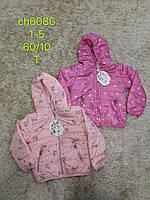 Куртка для девочек оптом, S&D, 1-5 лет, № СН-6086