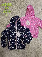 Куртка для девочек оптом, S&D, 1-5 лет, № СН-6085