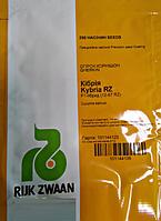 Семена огурца Кибрия F1 250 семян, Rijk Zwaan