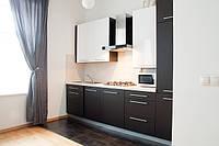 Посуточная аренда квартиры во Львове (проспект Свободы)