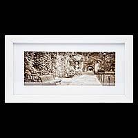 Занимательная картина с фотографией в ретро стиле 18*33 B-78-05 (белый)