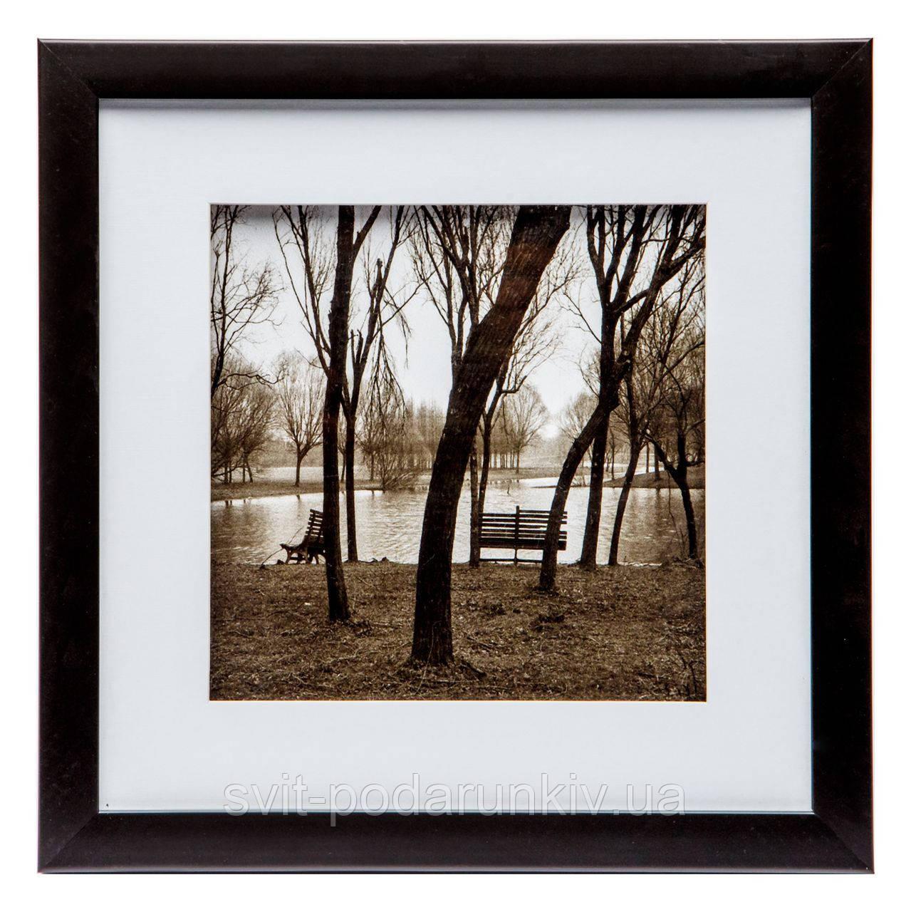 """Ретро-картина 28*28 B-79-13 """"Осенний парк"""" (черный)"""