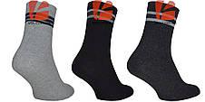 Шкарпетки махрові 23-25 розмір, фото 2