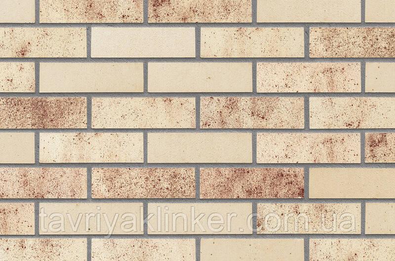 Клінкерна фасадна плитка Summerian city (HF59), 240x71x14 мм