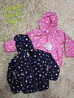 Куртки на девочек оптом, S&D, 98-128 рр