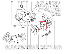 Прокладка масляного радиатора (теплообменника) на Рено Логан II 1.5 (K9K) — AJUSA (Испания) - 77002200