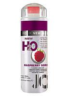 Малиновая Гель смазка для секса лубрикант на силиконовой основе H2O Raspberry Sorbet 156мл. Orginal USA