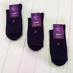Мужские классические демисезонные носки Смалий/ Рубежное 25, темно синий