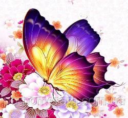 Картина из страз Гулівер країна Солнечный бабочка (ME21349) (GU_188708) 30 х 30 см