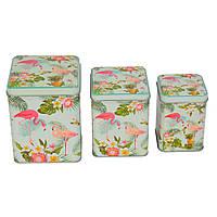Набор банок Flamingo SKL11-208086