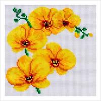 Набір для вишивання хрестиком нитками муліне акрил - орхідея, М-0116