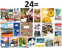 "Тетрадь 24 листа линия=, ""Тетрада"" бумага офсет (цветная обложка) уп20, фото 1"