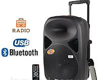 Аккумуляторная колонка с радиомикрофоном TMS A28 (USB-BT-FM)