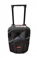 Автономная акустическая система TMS SL 08-23 (USB-BT-FM-1MIC)