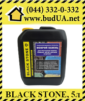 Black Stone - пропитка для тротуарной плитки, эффект мокрого камня, 5л, фото 1