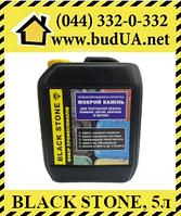 Black Stone с тонировочным эффектом - пропитка для тротуарной плитки, эффект мокрого камня, 5л, фото 1