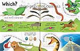Книга с окошками Lift-the-Flap Questions and Answers about Animals, фото 2